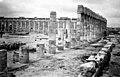 ביקור בחפירות ארכיאולוגיות בעיר CIRENE שביצוע האיטלקים בלוב 1943 - iבא btm3264.jpeg