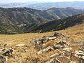 سەر شاخی کوڕە کاژاو - panoramio.jpg