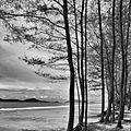 หาดประพาส ระนอง - panoramio.jpg