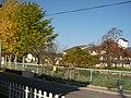 前谷地小学校前の紅葉 - panoramio.jpg