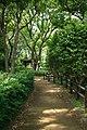 東高根森林公園 - panoramio (46).jpg