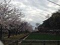玖島城跡 - panoramio (4).jpg