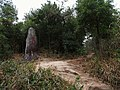 观音掌 - Palm Rock - 2015.01 - panoramio.jpg