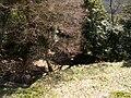 高取城跡(takatorijyou ato) 2010-3-19 - panoramio - ys1979 (17).jpg