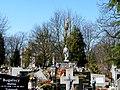 - Cmentarz Nowofarny - panoramio (10).jpg