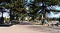 - Cmentarz Nowofarny - panoramio (47).jpg