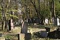 1395viki Cmentarz żydowski przy ul. Lotniczej. Foto Barbara Maliszewska.jpg