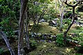 140531 Hokkeji Nara Japan12s3.jpg