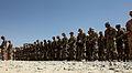 173rd honors fallen Chosen soldier DVIDS654326.jpg