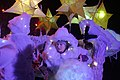 19.11.16 Todmorden Lamplighter Festival 076 (30301030664).jpg