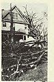 1920 Palm Sunday tornado in Wilmette, Illinois 4.jpg