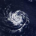 2013 Midget Typhoon.jpg