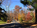 2014-11-02 13 49 17 View north along a wooded portion of Poor Farm Road during autumn in Hopewell Township, New Jersey.JPG