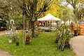 2015-10-17 11-23-59 marche-plantes-belfort.jpg