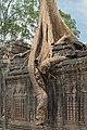 2016 Angkor, Preah Khan (45).jpg
