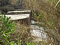 2017-02-22 Remains of a bridge and water mill on the Quarteira River (1).JPG