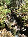 2017-05-16 11 22 31 A small stream along the Appalachian Trail on the southeast side of Mount Rogers, within the Lewis Fork Wilderness of Grayson County, Virginia.jpg