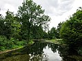 2018-06-18-bonn-meckenheimer-allee-169-botanischer-garten-14.jpg