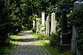 211viki Cmentarz Żydowski na Ślężnej. Foto Barbara Maliszewska.jpg