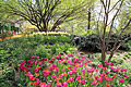 2979-Central Park-Strawberry Fields.JPG