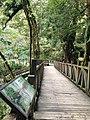 336, Taiwan, 桃園市復興區華陵里 - panoramio (14).jpg