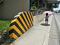 3899NAIA Road Pasay City Bridges Parañaque Landmarks 12.jpg