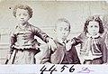 4456D - 01, Acervo do Museu Paulista da USP.jpg