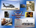 451st Air Expeditionary Group graphic.jpg