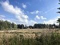 5968 Tiny.Houses.Westpark.DeHeld.Leegkerk.202009.HoenDiep.jpg