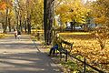 7357 Planty krakowskie. Foto Barbara Maliszewska.jpg