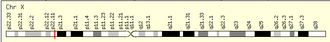 Acyl-CoA thioesterase 9 - ACOT9 location on the human chromosome X