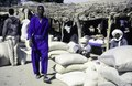 ASC Leiden - van Achterberg Collection - 1 - 223 - Un marché avec des hommes. Des haricots dans des sacs. Des sacs de farine - Léré, Tombouctou, Mali - 9-29 novembre 1996.tif
