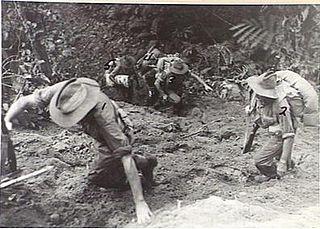 Battle of the Hongorai River