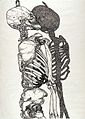 A skeleton and its shadow. Pen and ink drawing by Joyce Cutl Wellcome L0027998.jpg