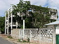 Abandoned building overgrown with ivy Paramaribo.JPG