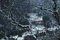 Above Phortse Tenga (3900m) - panoramio.jpg