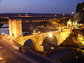Alcantara bridge in the night.jpg