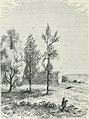 América pintoresca; descripcion de viajes al nuevo continente por los mas modernos exploradores (1884) (14595288027).jpg
