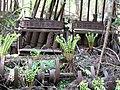 Amanuma gold mine ruins. 天沼金山跡 - panoramio.jpg