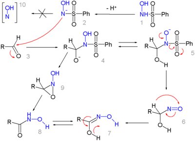 The mechanism of the Angeli-Rimini reaction