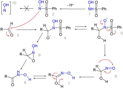 Mechanismus der Angeli-Rimini-Reaktion