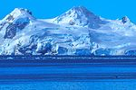 Another spectacular cruise northward along the NW coast of the Antarctic Peninsula.more Humpback whales surfacing near the ship. (26014421915).jpg