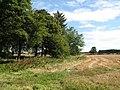 Arable land near Ouston - geograph.org.uk - 617297.jpg