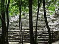 Archaeological Site - Coba - Quintana Roo - Mexico - 03 (15728463246).jpg