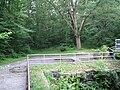 Archbald Pothole State Park 1.jpg