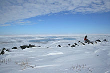 A view of the Arctic Ocean from Tuktoyaktuk in early April, 2008