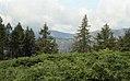 Around the Lake District, Cumbria (200293) (9453828052).jpg