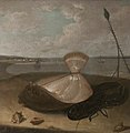 Arthur Devis (1712-1787) - Turbot, Lobster and Sea Shells, in the Thames Estuary (^) - 107876 - National Trust.jpg