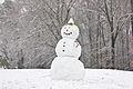 Auburn Alabama Snowman 2009.jpg