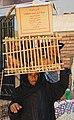 Auf dem Hauptmarkt von Assuan in Ägypten. 6198 origWI.jpg